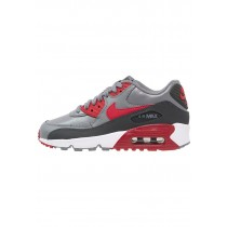 Nike Air Max 90 Schuhe Low NIKfim1-Grau