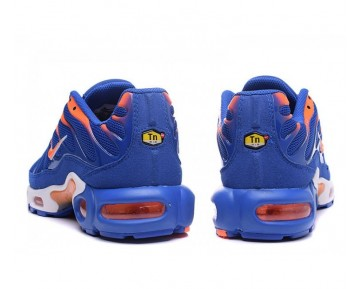 Nike Air Max TN Plus Fitnessschuhe-Herren